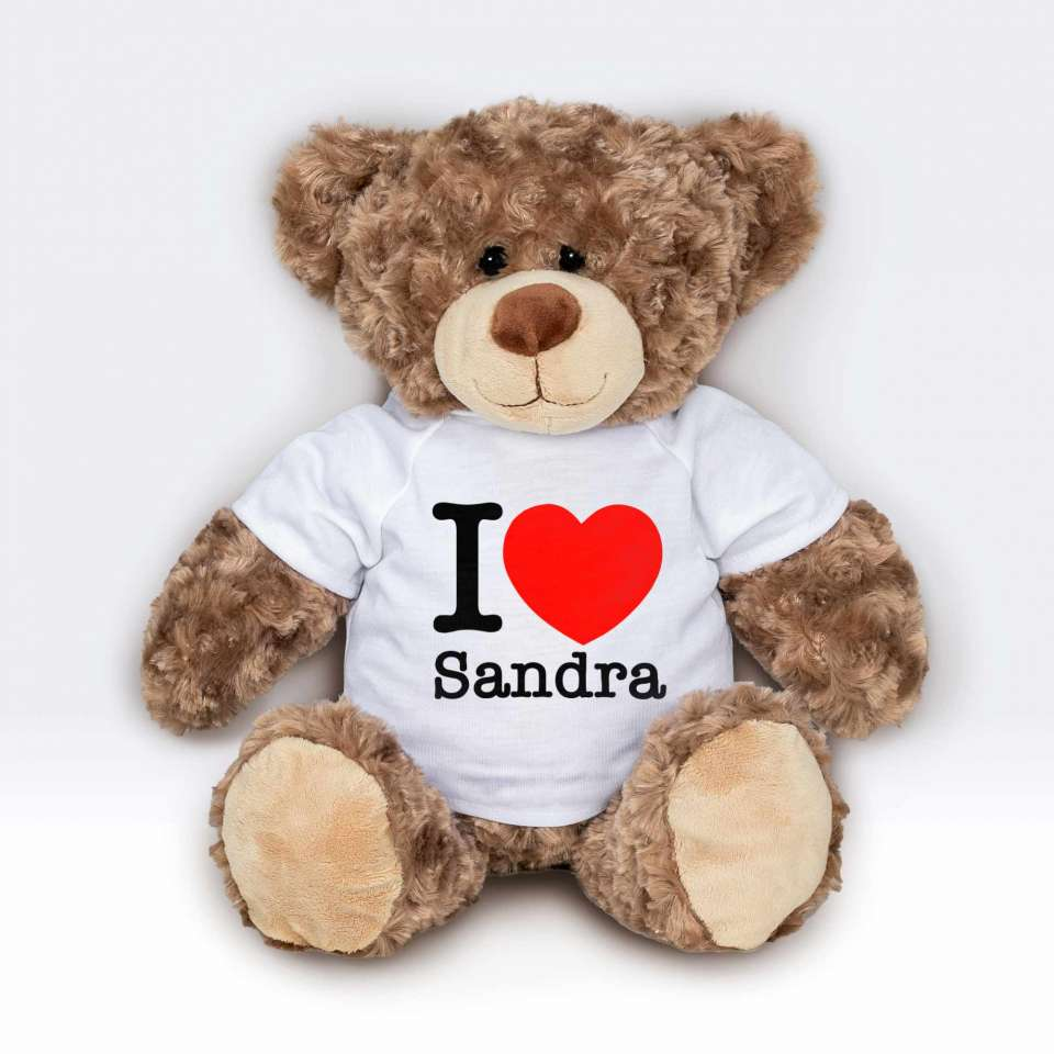 Teddy T-shirt I Love